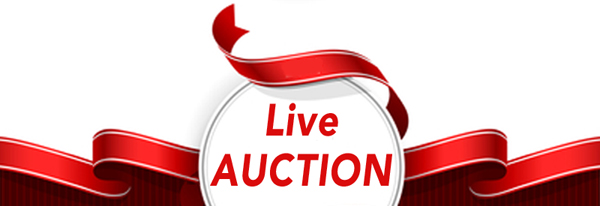 Carols by Candlelight auction, fundraiser, Rady Childrens Hospital
